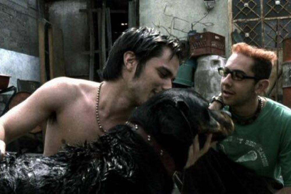 amores-perros