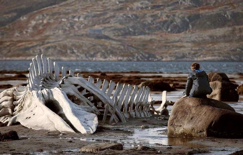 Her Devrin Filmi: Leviathan
