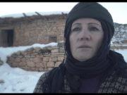 Kar Zamanı | Cevahir Çokbilir